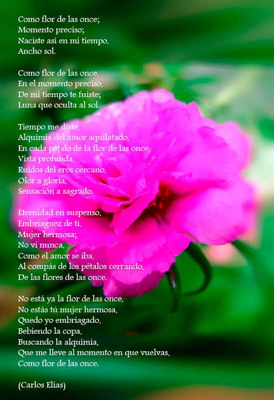 poema de Carlos Elías